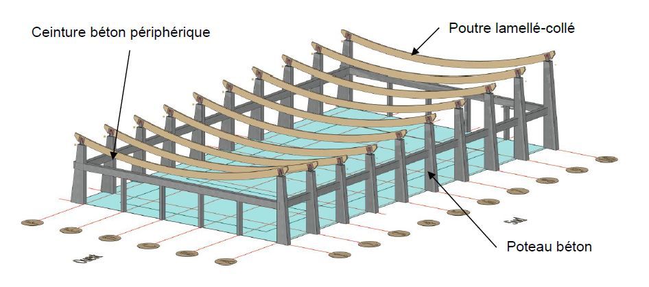 Plan De Coupe Piscine De La Faisanderie   Cabinet SEDIME   Extrait